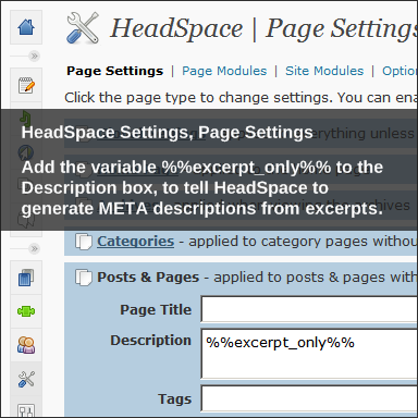 HeadSpace2 for WordPress, Page Settings, Excerpt as META description