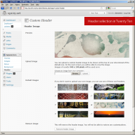 WordPress 3.0: Twenty Ten theme, Headers
